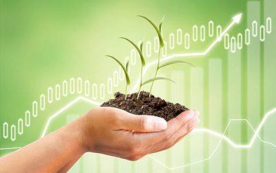 La finanza sostenibile e responsabile